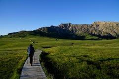 Traccia di escursione meravigliosa su alp de siusi Val Gardena/verso sud nel Tirolo/Italia Immagine Stock