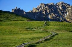 Traccia di escursione meravigliosa su alp de siusi Val Gardena/verso sud nel Tirolo/Italia Fotografie Stock