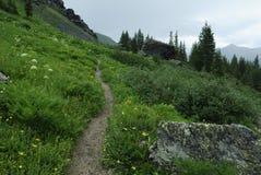 Traccia di escursione in montagne rocciose del Colorado Fotografie Stock