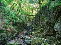Traccia di escursione nel parco nazionale di Valgrande Fotografia Stock
