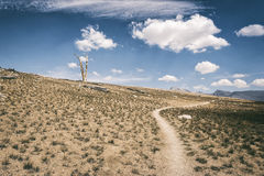 Traccia di escursione nella sierra Nevada Mountains Fotografie Stock Libere da Diritti