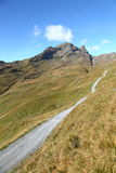 Traccia di escursione nelle alpi Immagini Stock Libere da Diritti