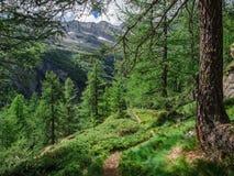 Traccia di escursione in parco naturale di Alta Valle Antrona Fotografia Stock