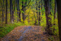 Traccia di escursione variopinta nel Central Park della contea di Lancaster Fotografie Stock Libere da Diritti