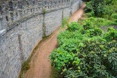 Traccia di Hillside in alberi ed in piante lungo il muro di mattoni grigio antico Fotografia Stock Libera da Diritti