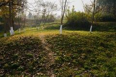 Traccia di Hillside in erba ed in erbacce della mattina soleggiata di inverno immagini stock libere da diritti