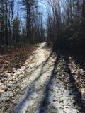 Traccia di inverni Fotografie Stock Libere da Diritti
