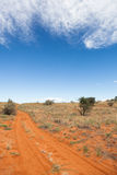 Traccia di Kalahari Fotografie Stock Libere da Diritti