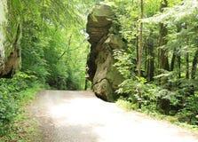 Traccia di Kildo - parco di stato del mulino di McConnells - Portersville, Pensilvania fotografia stock libera da diritti