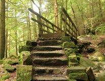 Traccia di Kildo - parco di stato del mulino di McConnells - Portersville, Pensilvania Fotografie Stock Libere da Diritti
