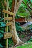 Traccia di legno Immagini Stock