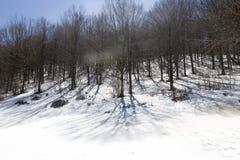 Traccia di montagna Immagine Stock