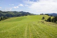 Traccia di montagna in montagne di Pieniny, Slovacchia Immagine Stock