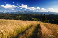 Traccia di montagna nel pomeriggio di estate - La naturale strabiliante Fotografia Stock