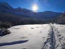 Traccia di montagna nell'inverno immagini stock libere da diritti