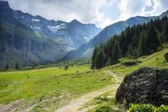 Traccia di montagna nelle alpi francesi Fotografia Stock