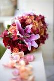 Traccia di Rosa Fotografie Stock