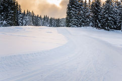 Traccia di sci di fondo al tramonto Immagini Stock Libere da Diritti