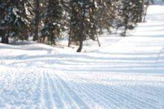 Traccia di Snowmobile immagine stock