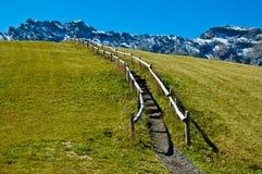 Traccia e rete fissa di montagna delle dolomia sul prato inglese Fotografia Stock