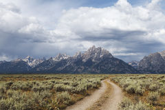 Traccia fuori strada nel grande parco nazionale di Teton Fotografia Stock Libera da Diritti