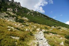 Traccia in montagne Fotografie Stock