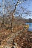Traccia nel lago central park immagine stock