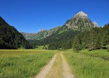 Traccia nel Oberseetal e nel Mt Brunnelistock Immagine Stock