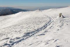 Traccia nella neve Immagine Stock