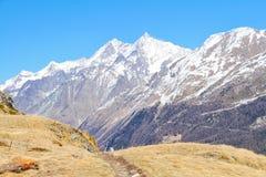 Traccia nelle alte alpi Immagine Stock