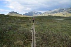 Traccia nelle montagne Fotografie Stock Libere da Diritti