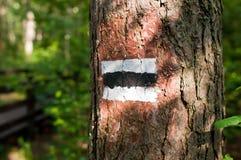 Traccia nera Fotografia Stock Libera da Diritti