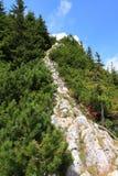 Traccia rocciosa al picco di montagna Immagini Stock Libere da Diritti