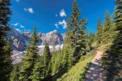Traccia in Rocky Mountains, Canada Immagine Stock Libera da Diritti