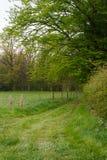 Traccia rurale durante l'escursione delle montagne in autunno, Belguim Fotografia Stock Libera da Diritti
