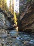 Traccia scenica di Johnston Canyon nel parco nazionale di Banff fotografia stock libera da diritti