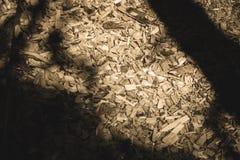 traccia turistica coperta di legno asciutto scheggiato - retro sguardo dell'annata immagine stock