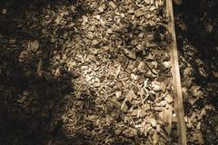traccia turistica coperta di legno asciutto scheggiato - retro sguardo dell'annata immagini stock libere da diritti