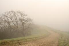 Traccia un giorno nebbioso Fotografie Stock