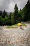 Tracciato nelle alpi slovene Fotografia Stock