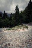 Tracciato nelle alpi slovene Immagine Stock Libera da Diritti
