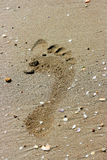 Trace. On sand from a leg of the person Royalty Free Stock Photo