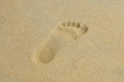 Trace of a bare foot on wet sand Stock Image