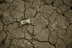 Trace of boot left on vysushenoj Sun Earth. Dry cracked earth. The desert. Background. It`s hot, the global shortage of water on stock image