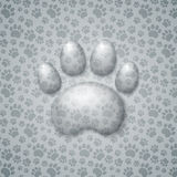 Trace Cat in the Form of Droplets Water Stock Photos