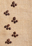 Trace of coffee beans Royalty Free Stock Images