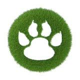 Trace de l'animal sur l'herbe verte Image libre de droits