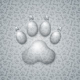 Trace Dog in the Form of Droplets Water Royalty Free Stock Photo