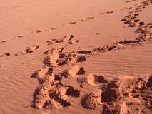 Trace en sables rouges Images libres de droits