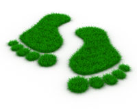 Trace foot from grass stock illustration